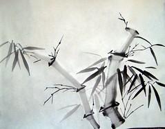 Crooked Bamboo