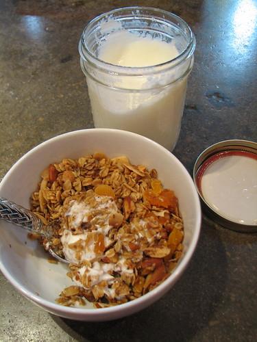 homemade yogurt and granola