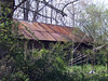 tin roof rusted (gumption girl pictures) Tags: tinroofrusted miancarvin ©mianbondcarvin mianbondcarvin gumptiongirlpictures gumptiongirlpicturescom bondcarvin ©gumptiongirlpictures