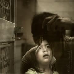 love reflected (Ąиđч) Tags: portrait baby reflection me window andy girl face self expression andrea daughter andrew io finestra autoritratto ritratto riflesso bambina faccia benedetti figlia espressione 35mmf18 nikond90 ąиđч