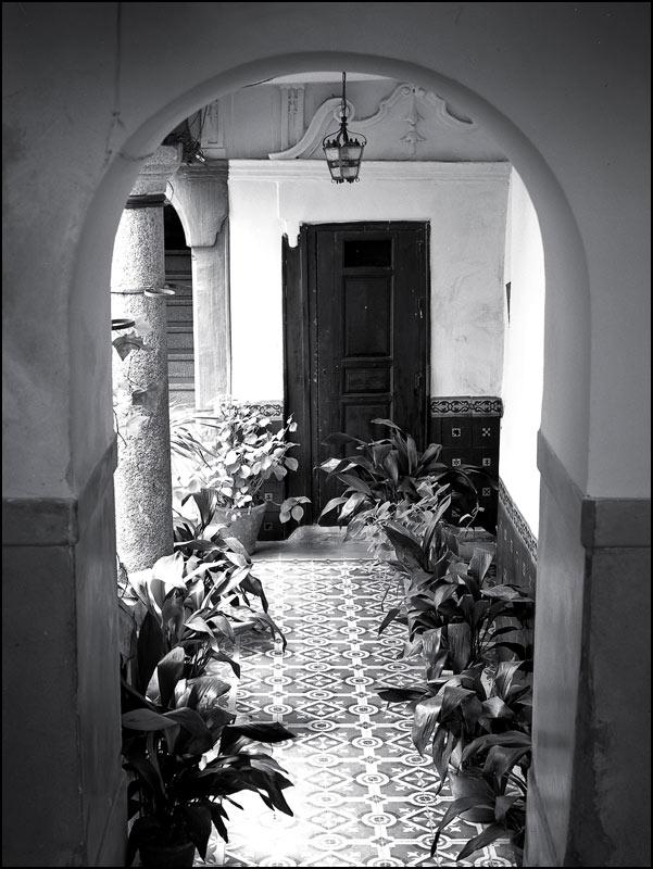 Patio en una casa de la Calle Alfileritos de Toledo en 1982. Fotografía de John Fyfe