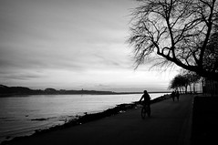 on the riverfront... (...storrao...) Tags: trees sunset sky people blackandwhite bw sun sol portugal bicycle rio clouds river walking pessoa nikon noiretblanc streetphotography cu nb bn sidewalk prdosol porto douro riverfront pretoebranco foz passeio rvores caminhando rivermouth marginal d90 storrao sofiatorro nikond90bw