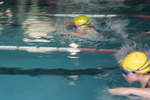 Day 113 - Interhouse Swimming