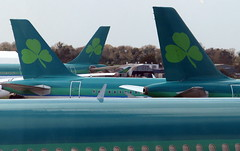 Sea of green (tearbringer) Tags: dublin airbus aer shamrock dub aerlingus a330 ei a320 lingus a321