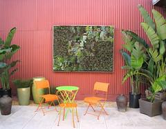 Living Wall (Kelley Macdonald) Tags: sanfrancisco livingwall crassula echeveria semps livingpicture sempevivum floragrubbs succulentpicture