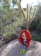 Murray in front of a cactus
