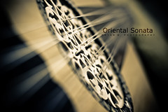 Oriental Sonata (Rayan M.) Tags: music art middleeast arabic melody musical sound instrument arabia strings oud                  rayanmphotography orientalsonata
