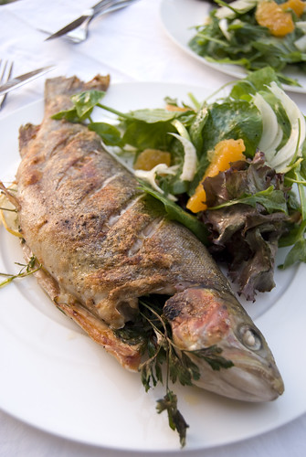 ... grilled fennel grilled trout with fennel recipes dishmaps grilled