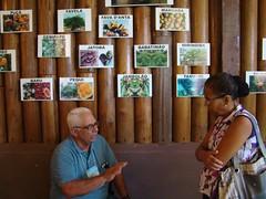 Edemo Correia fala sobre os frutos nativos do Xingu (Y IKATU XINGU) Tags: desfile cerrado frutos taquara meinako seminrioagentessocioambientais seminrioagentessocioambientaisxingu educaoagroflorestal