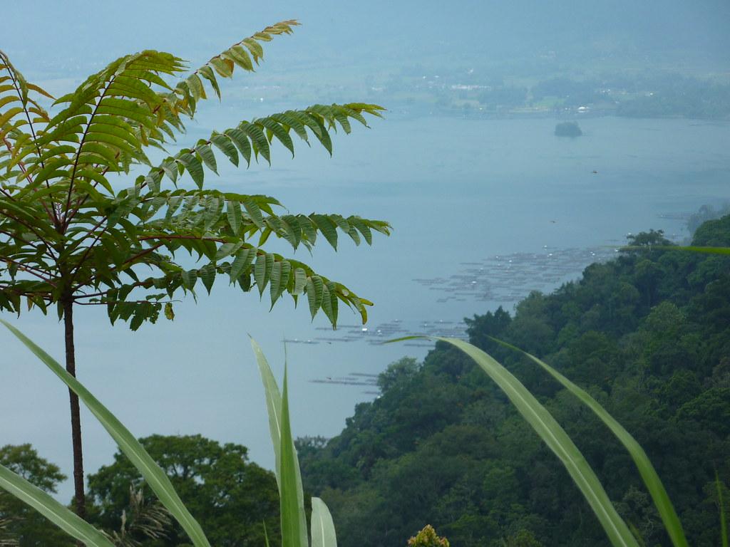 Sumatra-Lac Maninjau (160)