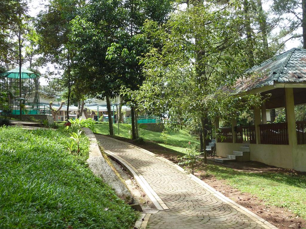 Sumatra-Bukittinggi (61)