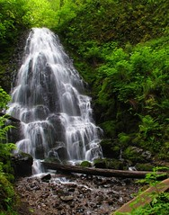 Fairy Falls (Terry.Tyson) Tags: oregon hiking columbiagorge hikes