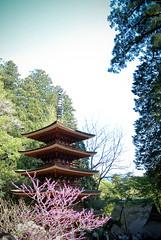Murou Temple (aquillar) Tags: nature japan architecture nara nationaltreasure nikond80 tokinaatx165pro
