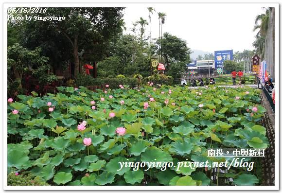 中興新村99年蓮花I2226