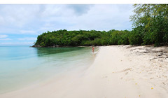 Marie Galante -  Anse Canot, vue > nord (Mr~Poussnik) Tags: france beach strand playa caribbean plage guadeloupe antilles spiagge mariegalante frenchcaribbean