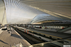 Lige-Guillemins Station (rbpdesigner) Tags: railroad slr station arquitetura architec