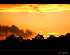 Fin de una tarde Lluviosa (E. DakoTa) Tags: sunset arbol atardecer lluvia rojo negro paisaje dia colores bilbao cielo nubes naranja bizkaia euskadi