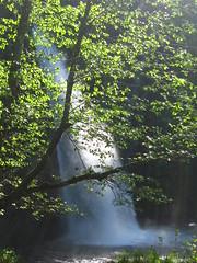 IMG_9698 (pjpink) Tags: trees mountains green rock oregon waterfalls cascades hoodriver columbiarivergorge pjpink may2010 vacation2010