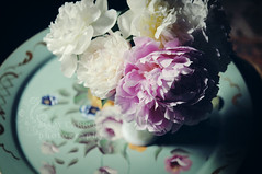 * bouquet * (carroll.mary (so behind I'll never catch up)) Tags: nature vase tray bouquet peonies toletray