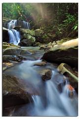 Very Borneo'ish (Nora Carol) Tags: rainforest paradise atmosphere jungle slowshutter canopy sabah inanam malaysianphotographer northborneo noracarol sabahanphotographer kionsomwaterfall whatsgaman landscapephotographerfromsabah womanlandscapephotographer womaninphotography