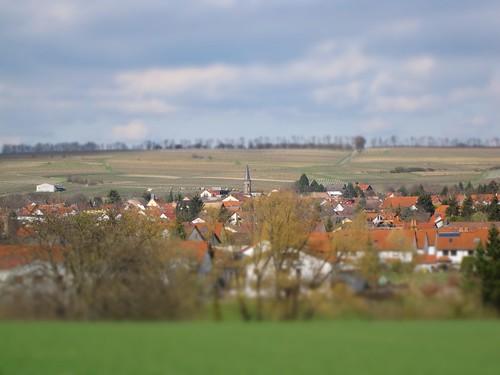 Schwabenheim an der Selz