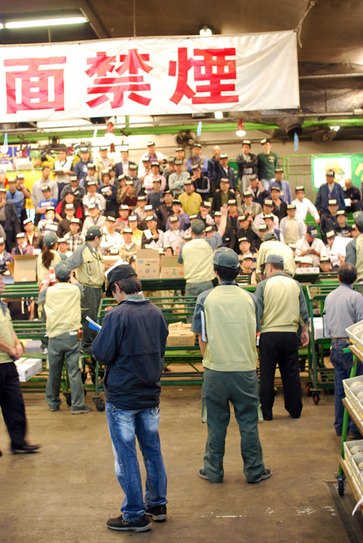 tsukiji vege auction