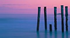 Groynes at sunset (VineetMenon) Tags: light sunset colour nikon moonlight groynes startrail nikkor18028 nikond700 passiondclic