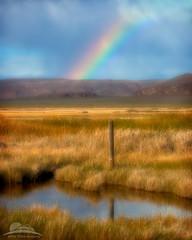 Fallen Dreams (Jesse Estes) Tags: oregon alvord jesseestesphotography