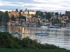 Lake Union from Gas Works (ElenaNW) Tags: park works seattlewashingtonwaseattlewallingfordgas worksgas