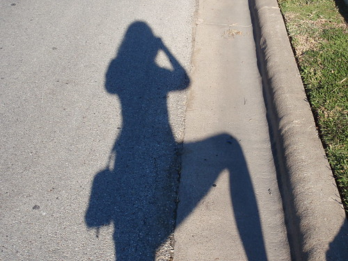 Shadow Shot