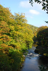 River Esk from the bridge at Hollows Mill