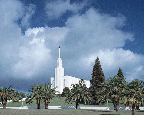 Hamilton New Zealand