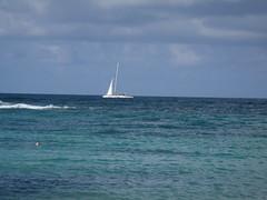 (lindsay.dee.bunny) Tags: family reunion network bahamas nassau gin information global 2010
