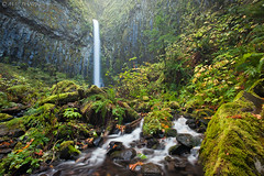 lush land... (Mac Danzig Photography) Tags: longexposure fall water oregon creek forest river landscape waterfall tnc11