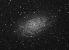 M33 Triangulum Galaxy (NGC 598) luminance Grayscale (Terry Hancock www.downunderobservatory.com) Tags: camera sky mountain night canon wow stars photography pier backyard mark shed images astro observatory telescope ii astrophotography m33 terry 5d astronomy imaging triangulum hancock alpha messier ccd universe instruments amateur cosmos celestron hydrogen osc astronomer teleskop astronomie byo deepsky astrofotografie mi250 astrophotographer Astrometrydotnet:status=solved Astrometrydotnet:version=14400 ngc508 Astrometrydotnet:id=alpha20101139917559