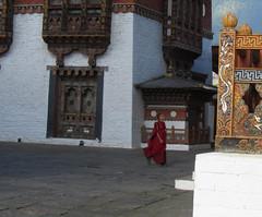 Bhutan-1684