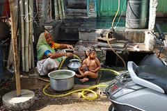 Freitag ist auf der ganzen Welt Waschtag. Friday is washing day all over the world. Children are especially happy when Grandma is washing their ears (chelis6252) Tags: mandi rajasthan street menschen kinder indien chelis62