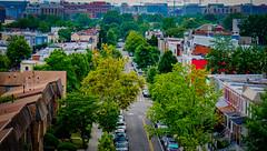 2017.07.02 DC People and Places, Washington, DC USA 7278
