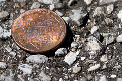E Pluribus Unum (shawnfaller) Tags: 4th july independence day money currency coin cent penny rock background macro photography close up small world 365 photo collection project shawn faller productions
