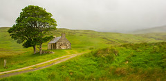 The Northwest Highlands Scotland (williamrandle) Tags: northwesthighlands scotland uk 2017 summer mountains clouds rain trees house building stone green missed isolation nikon d7100 tamron2470f28vc outdoor landscape track