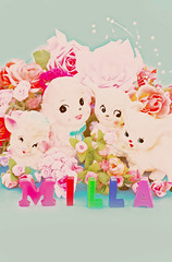Milla Rose (boopsie.daisy) Tags: pink flowers blue roses baby color colors girl animals rose japan vintage friend colorful sheep sweet planters name ashley letters birth kitsch announcement pastels lamb congratulations 2009 hooray milla november9th daisyprincess