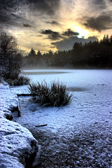 Cold (Ben Locke (Ben909)) Tags: winter lake snow ice gloucestershire forestofdean speechhouse tumblr