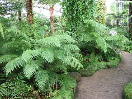 20090919 Edinburgh 20 Royal Botanic Garden 167