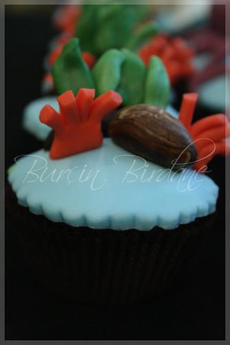 Cupcake S