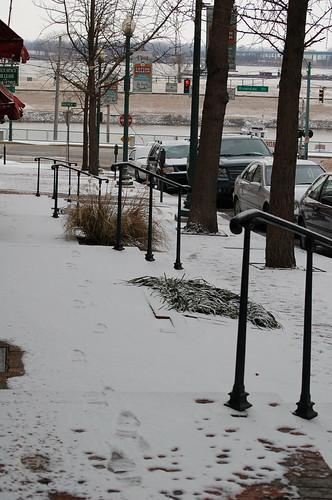 Memphis Snow Day 2010