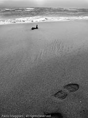 25122008-_C255533 (Paolo_Maggiani) Tags: sea blackandwhite beach water marina blackwhite marine mare wave acqua spiaggia versilia maredinverno marinadipietrasanta