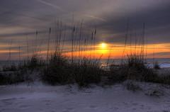 Amelia Island Sunrise (Jeremy Duguid) Tags: sun colour beach water colors grass yellow clouds sunrise canon landscape sand searchthebest florida dunes horizon jeremy fernandina ameliaisland duguid naturesfinest 50d supershot bej mywinners simplysuperb coth5 jeremyduguid