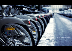 bike sharing () Tags: paris bike dof bikes location notredame rent urbanjungle tamron f28 vlos parigi bicicletta saintmichel noleggio streetcapture 1750mm vlib placelouislpine vincenzopapa