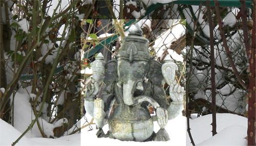 2010 janvier 13 - neige 013
