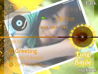 sony-ericsson_mediaplayer-skinner-04